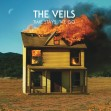 The Veils - Time Stays We Go